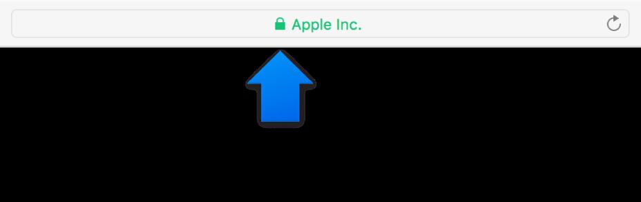 Het coderingssymbool (het hangslot) voor een site met een certificaat voor uitgebreide controle.