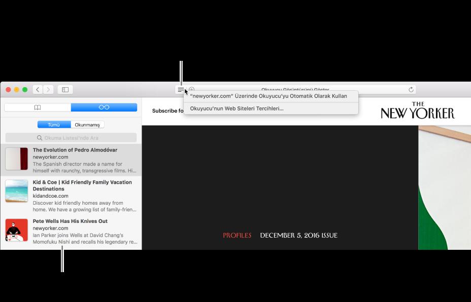 Okuma Listesi'nin görüntülendiği bir Safari penceresi.