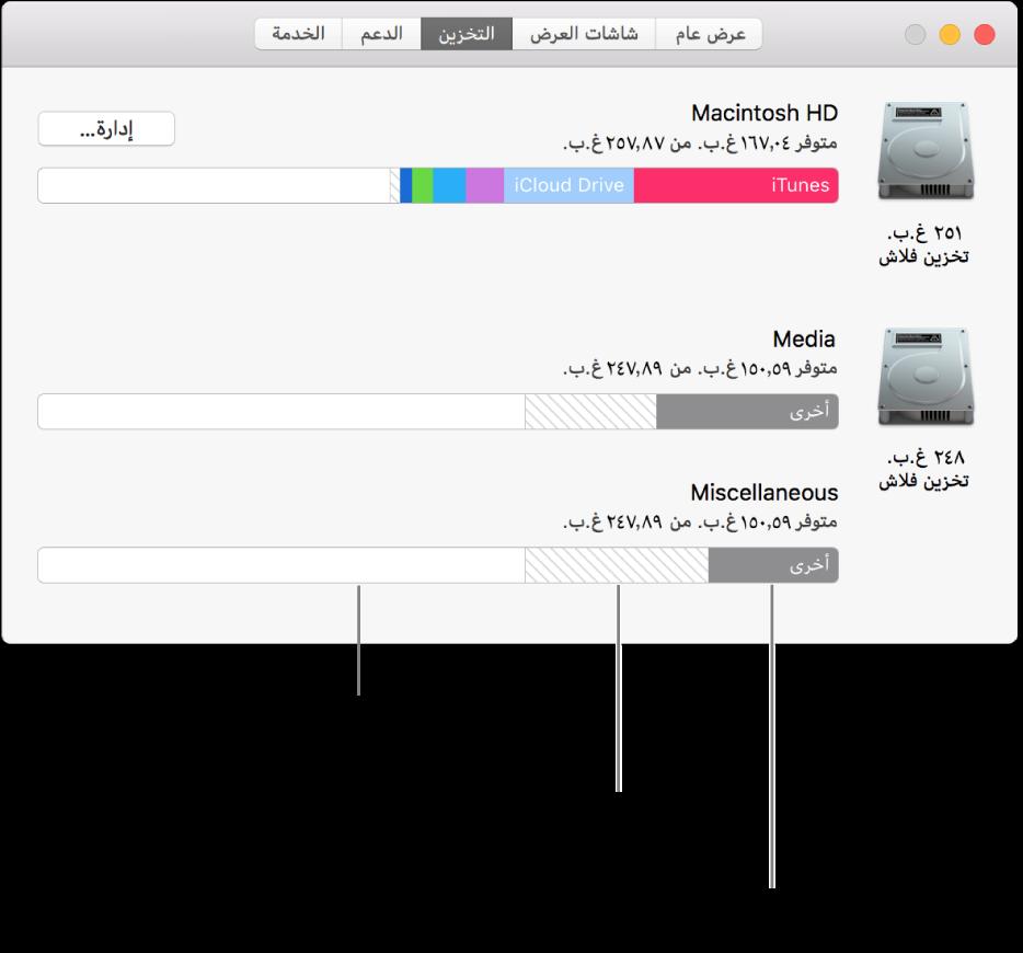 قسم APFS فردي (حاوية) به وحدتي تخزين.