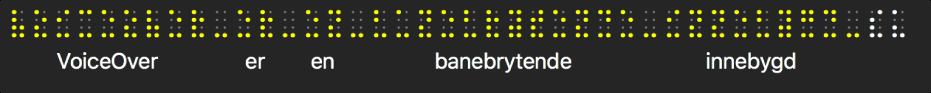 Punktskriftpanelet viser simulerte gule punktskriftprikker. Tekst under prikkene viser hva VoiceOver leser opp for øyeblikket.