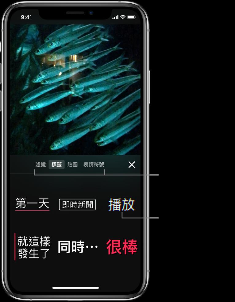 檢視器中顯示影片影像,下方顯示選取了「標籤」以及標籤選項。