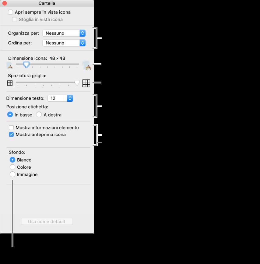 Una finestra che elenca le opzioni per la vista Icone.
