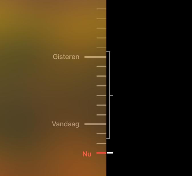 Grijze maatstreepjes op de tijdbalk met reservekopieën. Het rode streepje geeft de reservekopie aan waarin je bladert.