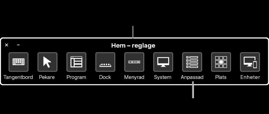 På hempanelen Reglagestyrning kan du emulera maskinvara och få tillgång till användargränssnittet. Anpassade paneler kan vara tillgängliga för specifika ändamål.