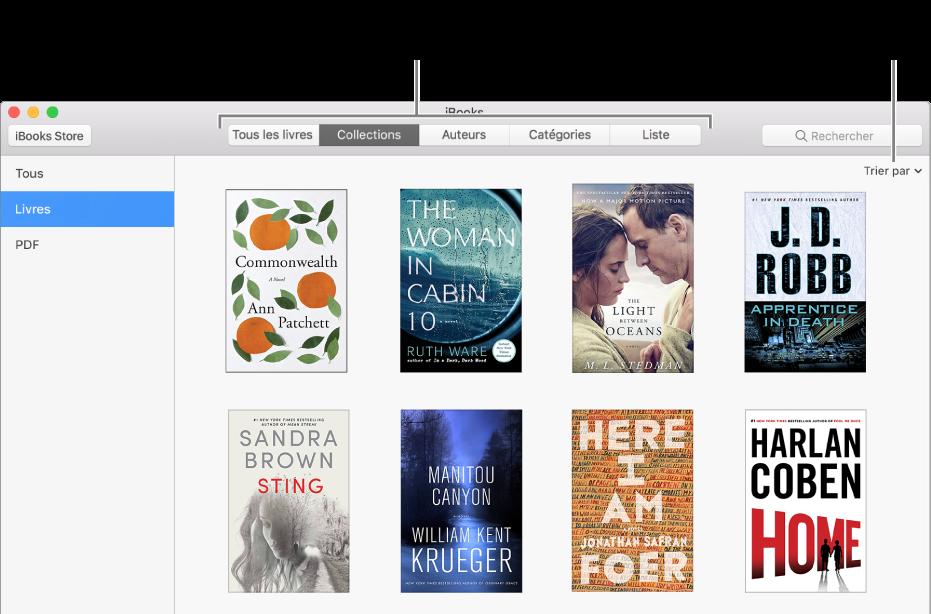 Une collection de livres dans une bibliothèque iBooks.