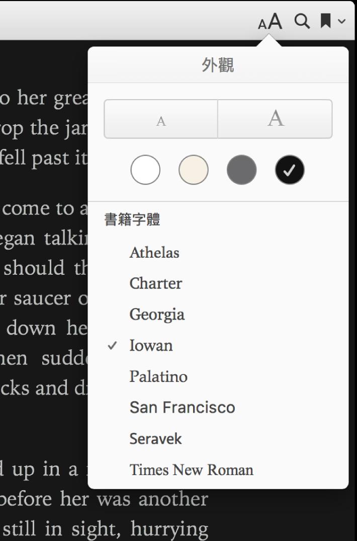 「外觀」選單中的文字大小、背景顏色和字體控制項目。