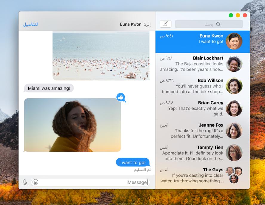 نافذة الرسائل وتظهر بها عدة محادثات مدرجة في الشريط الجانبي على اليسار، ومحادثة تظهر على اليمين.
