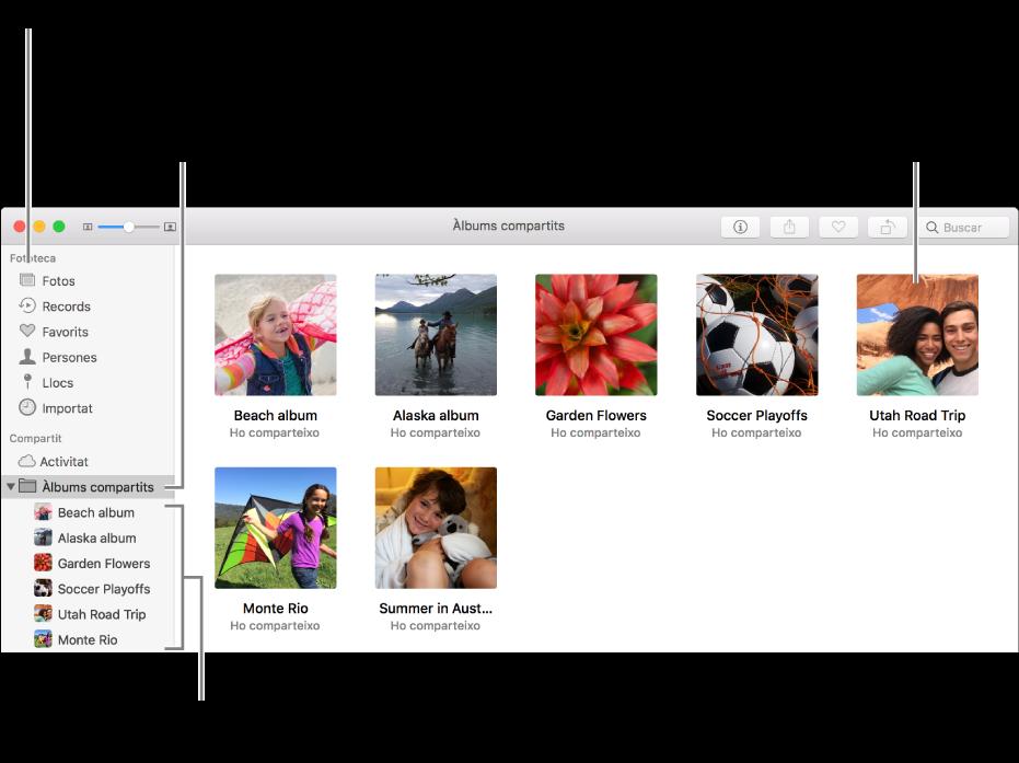 El tauler Compartit de la finestra de l'app Fotos, que mostra àlbums compartits.