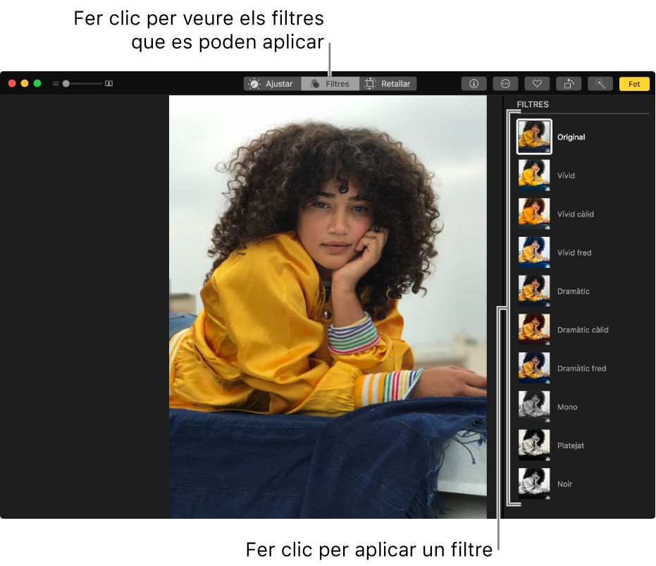 Una foto en la vista d'edició amb els filtres visibles a la dreta.