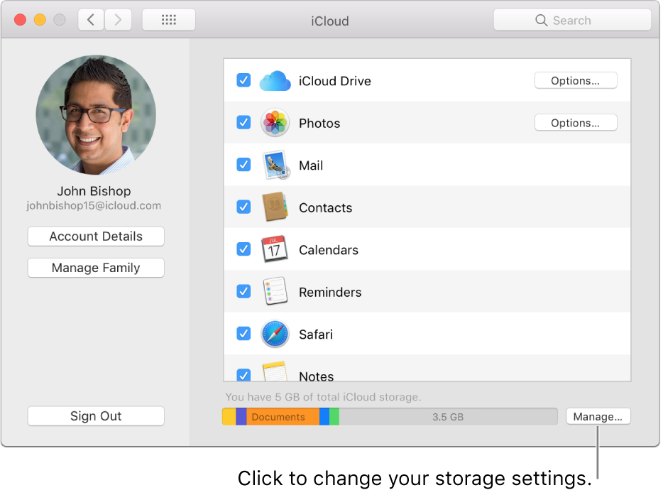 iCloud pane of System Preferences.