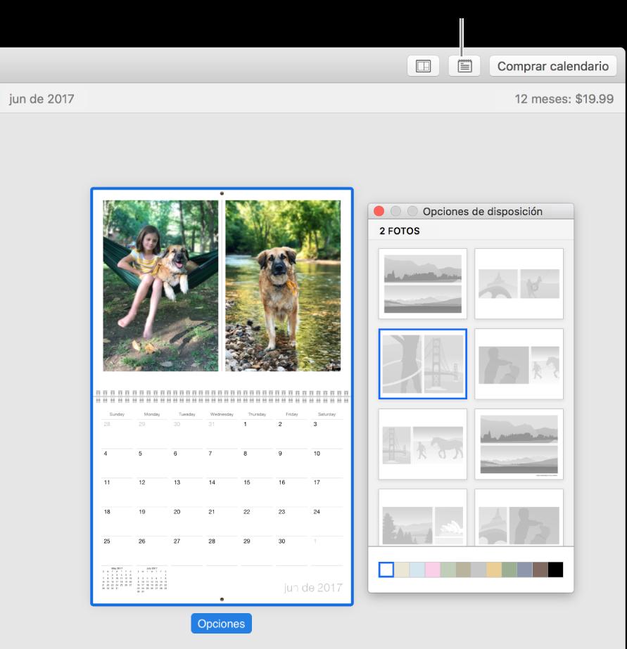 """Página de calendario a la izquierda con la ventana """"Opciones de disposición"""" a la derecha, donde se muestran disposiciones de página."""