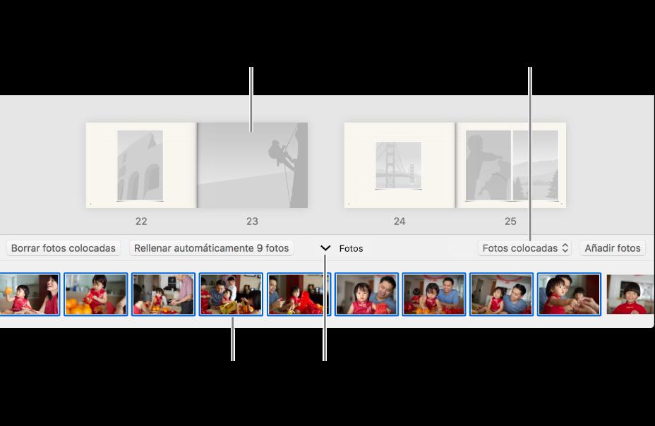 Ventana de Fotos con páginas de un libro y el área de Fotos visible en la parte inferior.