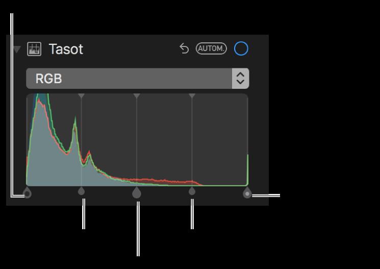 RGB-histogrammin tasosäätimet, mukaan lukien (vasemmalta oikealle) musta piste, varjokohdat, keskisävyt, valokohdat ja valkoinen piste.