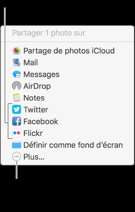 Menu Partager présentant des extensions tierces, telles que Flickr.