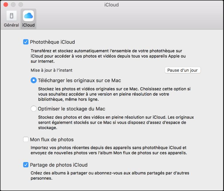 Sous-fenêtre iCloud des préférences Photos.