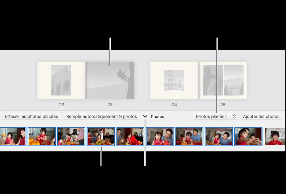Fenêtre Photos affichant les pages d'un livre avec la zone Photos en bas.