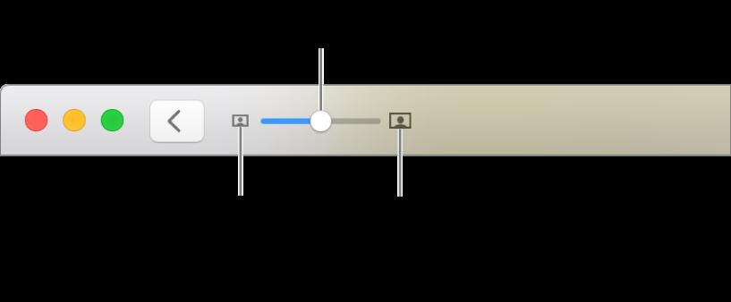Barre d'outils affichant les commandes Réduire/agrandir.