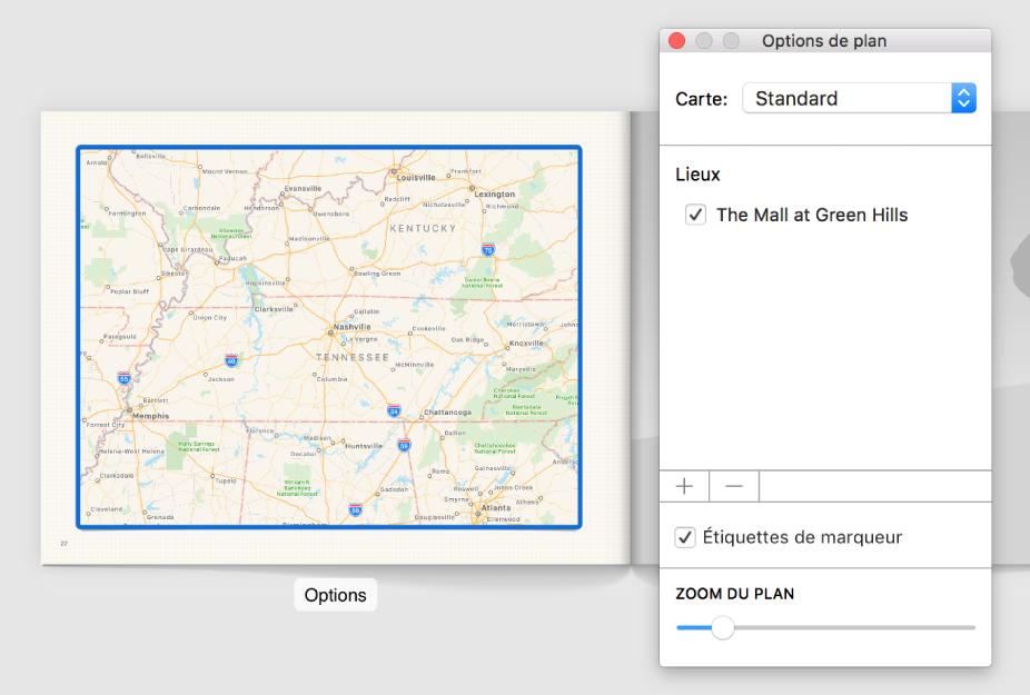 Plan dans un livre avec le bouton Options en dessous et la fenêtre des options de plan ouverte sur sa droite.