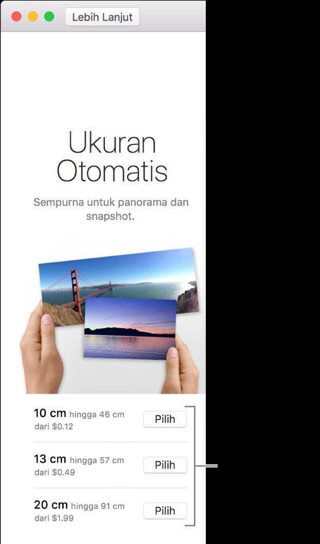 Jendela menampilkan pilihan ukuran untuk format cetak Ukuran Otomatis.