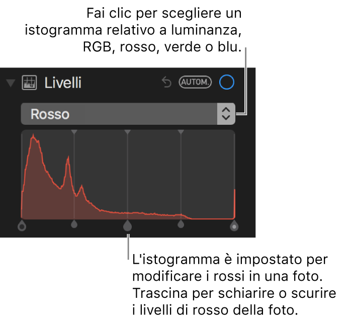 Controlli dei livelli e istogramma per modificare i rossi in una foto.