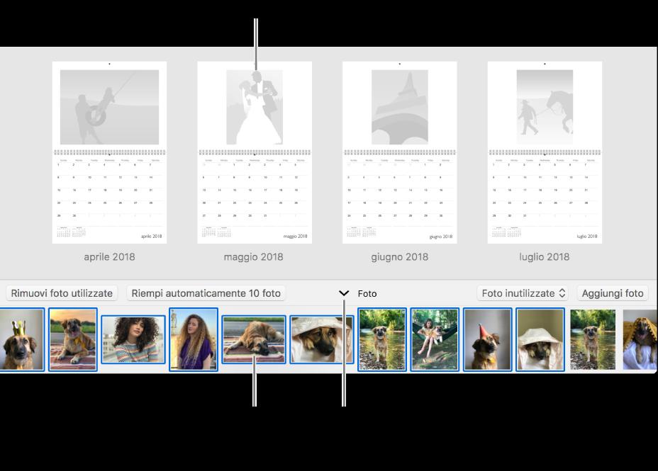 Finestra di Foto che mostra le pagine di un calendario con l'area Foto in basso.