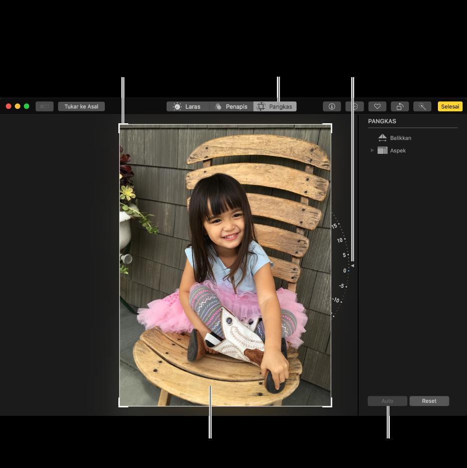 Tetingkap menunjukkan foto dengan pilihan pangkas dan meluruskan.