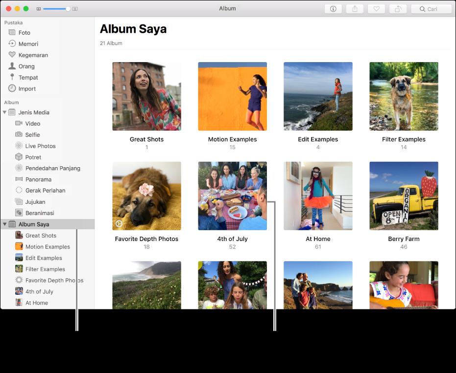 Tetingkap Foto dengan Album Saya dipilih dalam bar sisi dan album yang anda cipta dipaparkan dalam tetingkap di sebelah kanan.