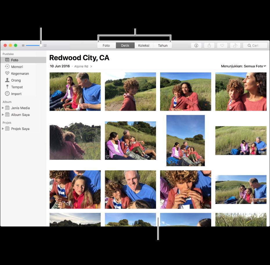 Tetingkap Foto menunjukkan foto dalam detik.