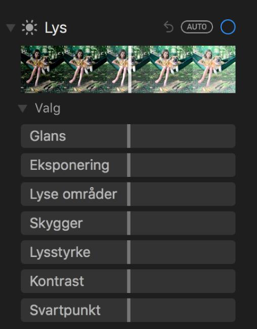 Lys-området i Juster-panelet som viser skyveknapper for Glans, Eksponering, Lyse områder, Skygger, Lysstyrke, Kontrast og Svartpunkt.