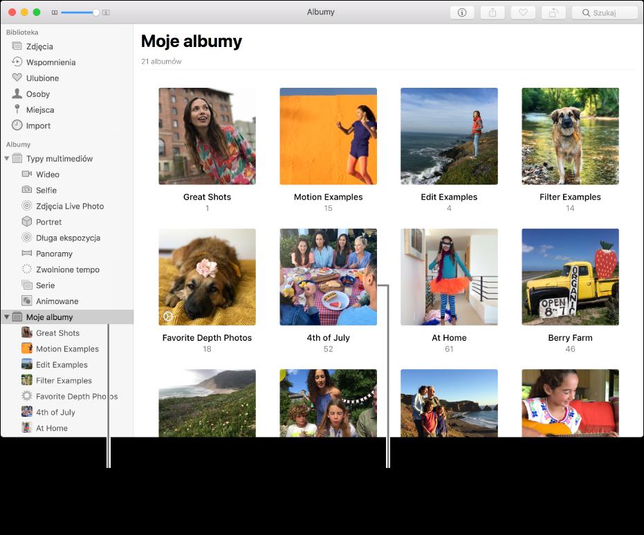 Okno aplikacji Zdjęcia zzaznaczonym na pasku bocznym albumem Moje albumy oraz utworzonymi albumami woknie po prawej stronie.