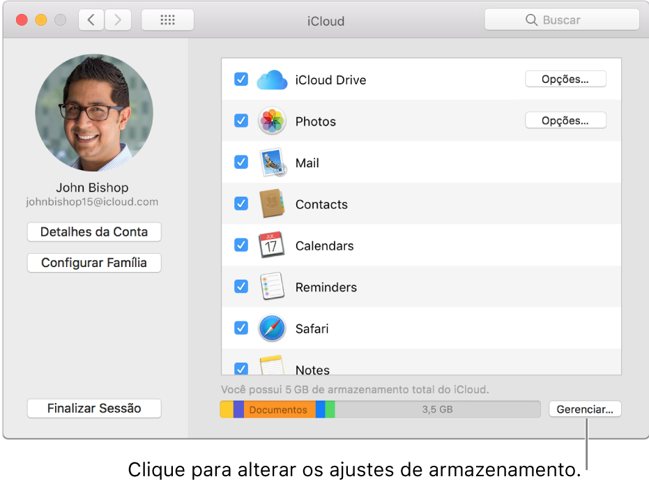 Painel iCloud das Preferências do Sistema.