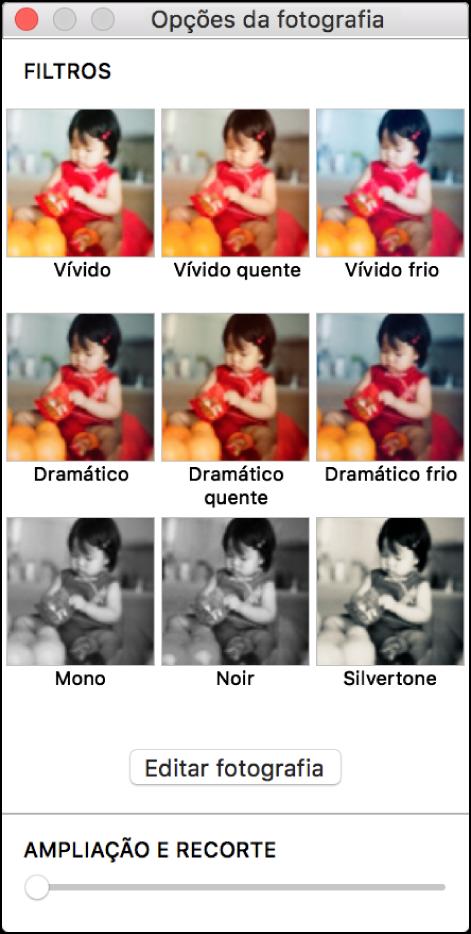 """Janela """"Opções da fotografia"""" com as opções de borda na parte superior"""