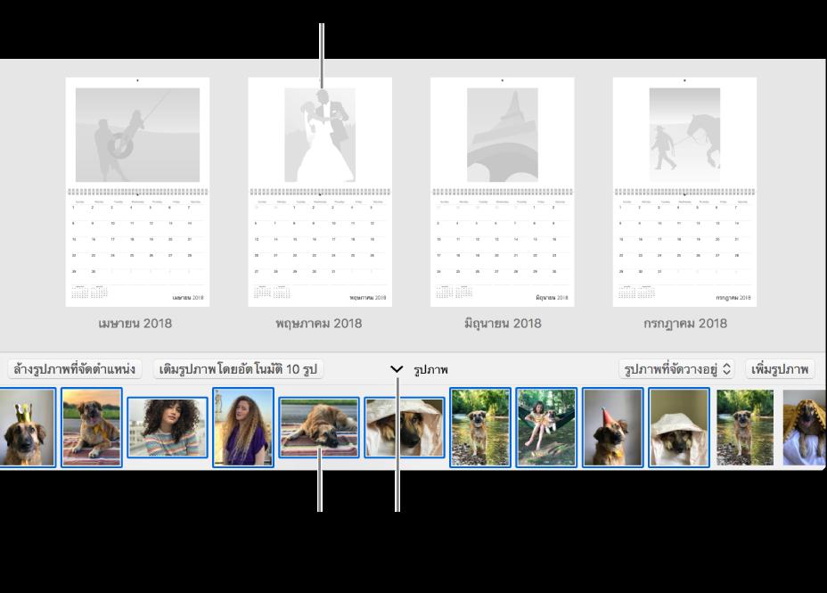 หน้าต่างรูปภาพที่แสดงหน้าของปฏิทินพร้อมพื้นที่รูปภาพที่ด้านล่างสุด