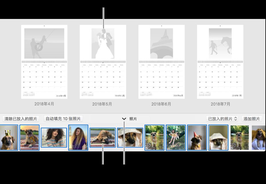 """显示日历页面的""""照片""""窗口,底部为""""照片""""区域。"""