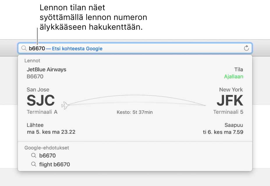 Älykkääseen hakukenttään syötetty lennon numero ja lennon tiedot sen alapuolella.