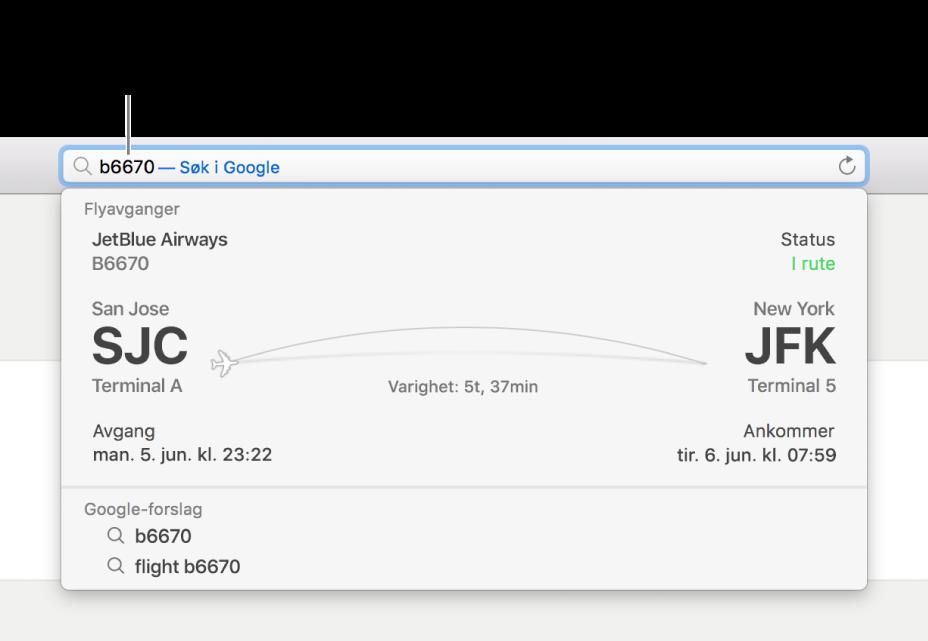 Et flyvningsnummer skrevet i det smarte søkefeltet, med status for flyvningen vist direkte under.