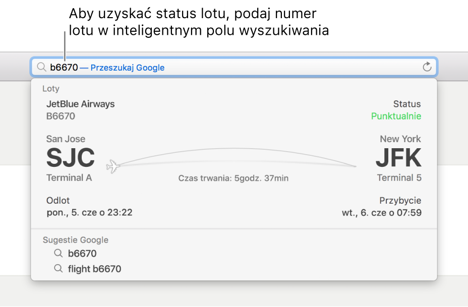 Numer lotu wpisany winteligentnym polu wyszukiwania. Bezpośrednio poniżej tego pola widoczny jest status lotu.