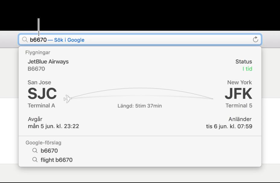 Ett flygnummer inskrivet i det smarta sökfältet med flygstatus direkt nedanför.