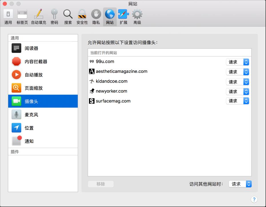 网站偏好设置,您可以在其中自定使用 Safari 浏览器浏览单个网站的方式。