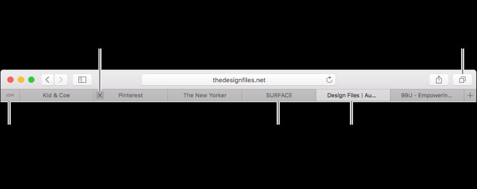 帶有標籤頁的 Safari 視窗。
