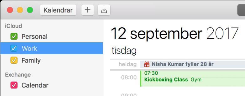 Ett Kalender-fönster i dagvyn med färgkodad personlig kalender, jobbkalender och familjekalender i sidofältet under iCloud-kontorubriken, och ytterligare en kalender under Exchange-kontorubriken.
