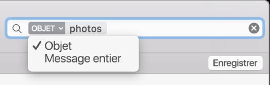 Cliquez sur la flèche d'un filtre de recherche pour le modifier.