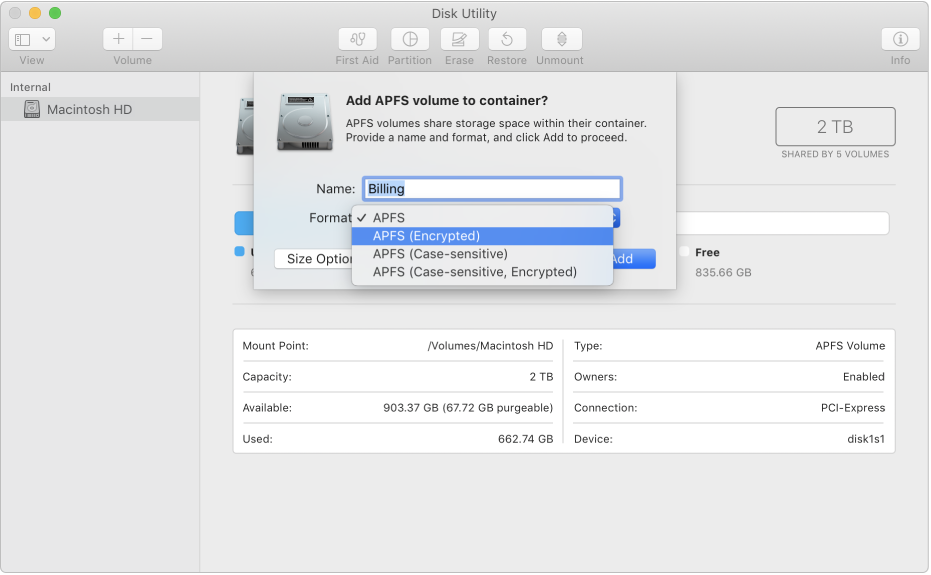 APFS (kryptert)-valget i Format-menyen.