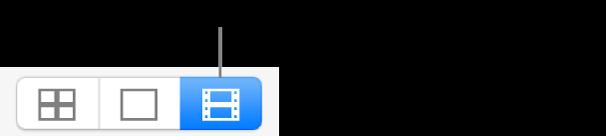ビデオボタン。