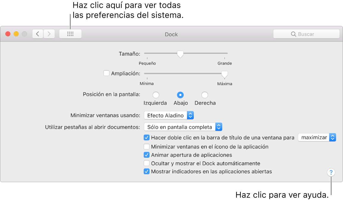 """Haz clic en """"Mostrar todo"""" para ver todos los íconos de preferencias. Haz clic en el botón con el signo de interrogación para ver la ayuda del panel."""