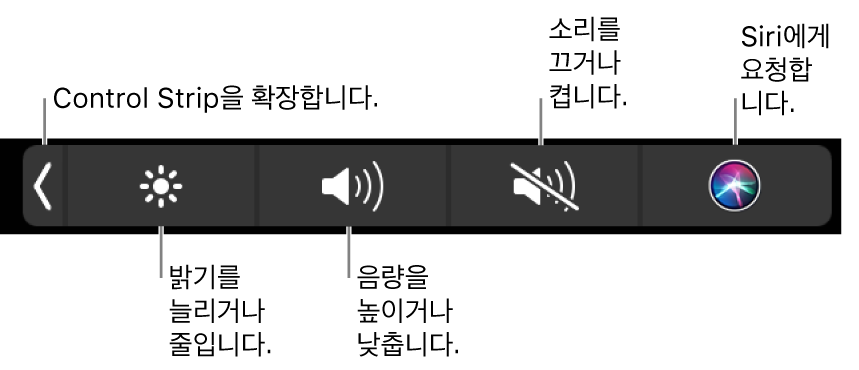 왼쪽에서 오른쪽으로 Control Strip을 확장하거나, 디스플레이 밝기 및 음량을 늘리고 줄이거나, 소리를 켜고 끄거나, Siri에게 요청할 수 있는 버튼이 있는 축소된 Control Strip.