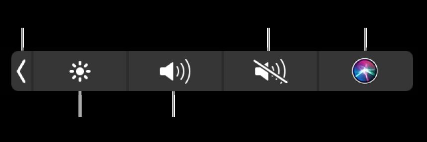 Control Strip ที่ยุบอยู่จะมีปุ่มต่างๆ เรียงจากซ้ายไปขวาดังนี้ ปุ่มสำหรับขยาย Control Strip ปุ่มสำหรับเพิ่มหรือลดความสว่างจอภาพและความดัง ปุ่มสำหรับปิดเสียงหรือเลิกปิดเสียง และปุ่มถาม Siri