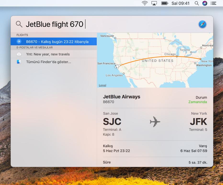 Uçuş durumu sonuçlarını gösteren Spotlight penceresi.
