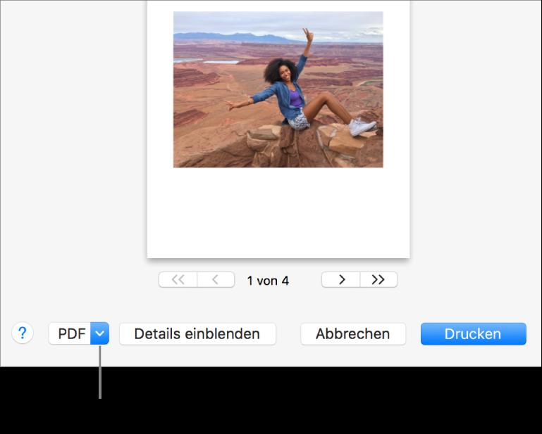 """Klicke auf das Einblendmenü """"PDF"""" und wähle """"Als PDF sichern""""."""