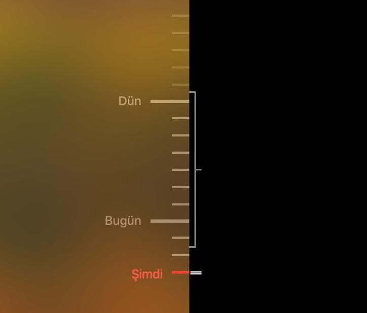 Yedekleme zaman çizelgesindeki gri işaret çentikleri. Kırmızı işaret çentiği taramakta olduğunuz yedeklemeyi belirtir.